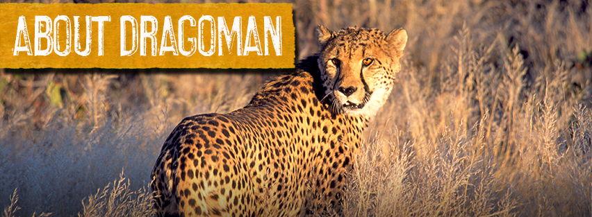 About-Dragoman-banner-4.jpg
