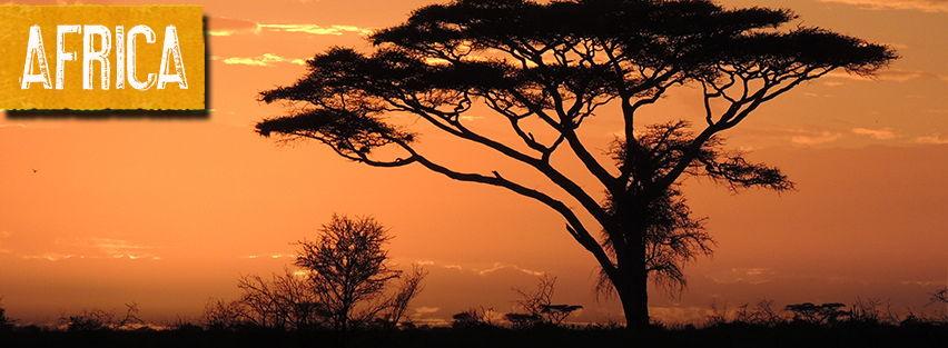 Africa-Banner-4.jpg