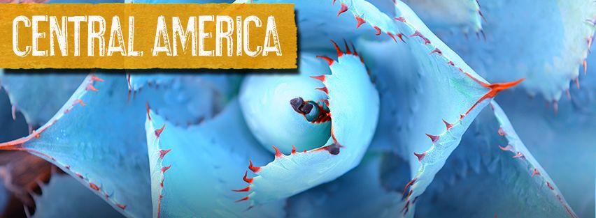 C-America-Banner-4.jpg