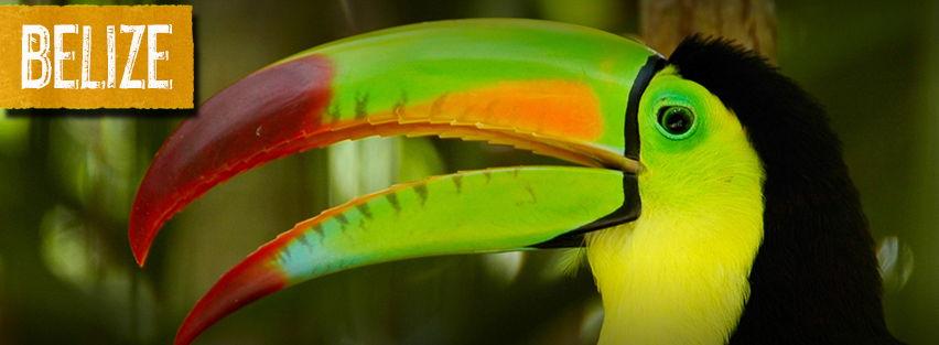 Belize-Page-Banner-4.jpg
