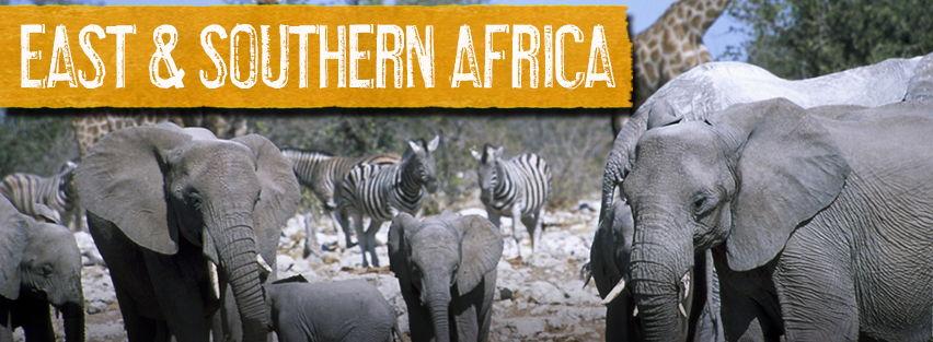 E&S-Africa-banner-image-3.jpg
