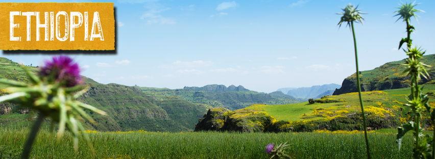 Ethiopia-banner-image-2.jpg